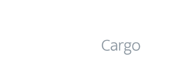 PayCargo_API_Costumers_American-Airlines